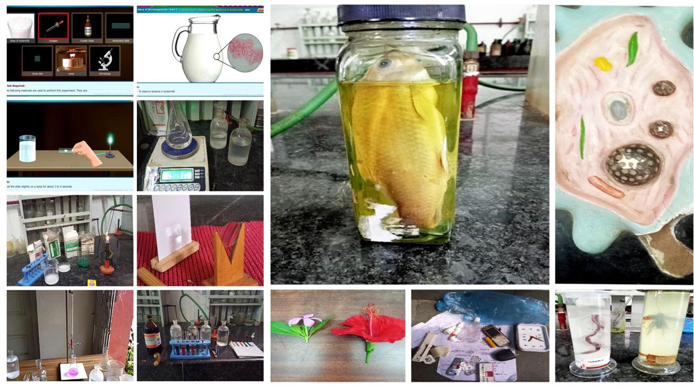 Science Practicals